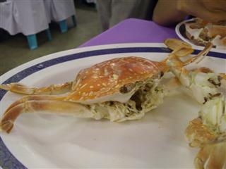 Hua Hin beach crab