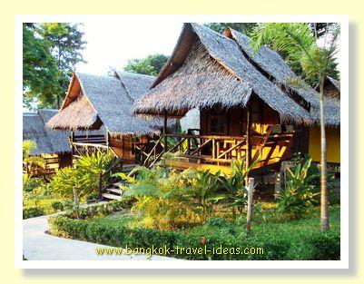 Tarzan Island hut for rent