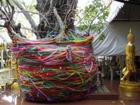 Bo tree in a Thailand Buddhist temple