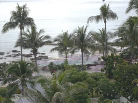 View of the palm garden at the Hua Hin Hilton Hotel